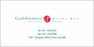gabbiano-business-2